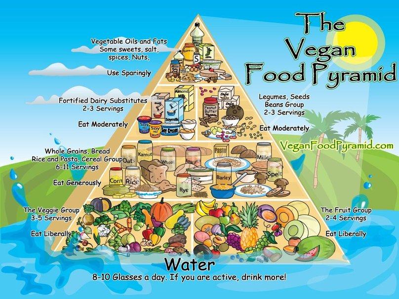 Vegan Attitude - Page 3 801644__food-pyramid_p