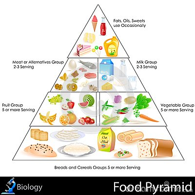 pyramide-alimentaire-31976102